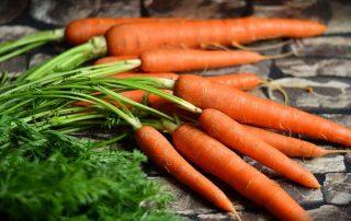 Myös porkkanoiden kuidut poistavat hampaiden värjäymiä.